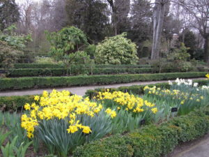 Ботанический сад в Мадриде-14