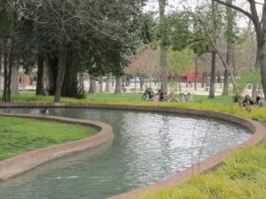 Ботанический сад в Мадриде-20