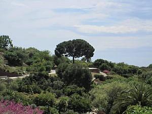 Ботанический сад Барселоны-2