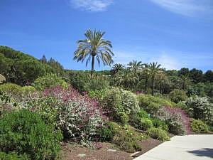 Ботанический сад Барселоны-1
