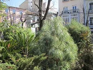 Ботанический сад в Гранаде-1