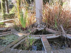 Ботанический сад в Гранаде-5