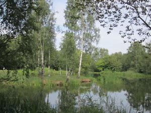 Главный ботанический сад РАН-2