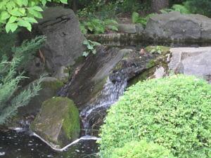 Японский сад Главного ботанического сада РАН-6
