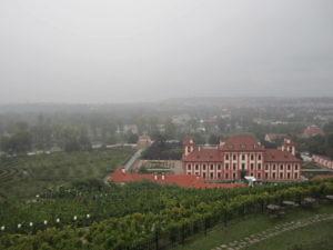 Ботанический сад в Праге-4