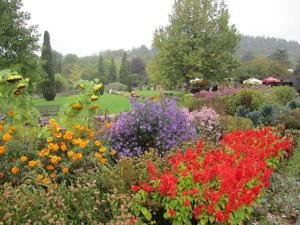 Ботанический сад в Праге-1