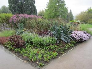 Ботанический сад в Праге-2