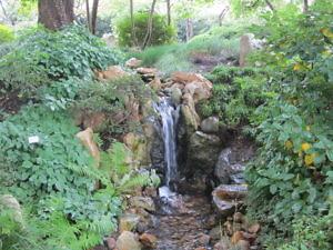 Японский сад Пражского Ботанического сада-4